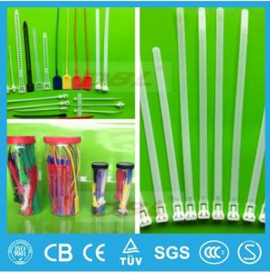 Free Sample 4′′ 6′′ 8′′ 10′′ Length Self-Locking, Releasable Plastic Cable Tie, Mountable Head Nylon 66 Plastic Cable Tie pictures & photos