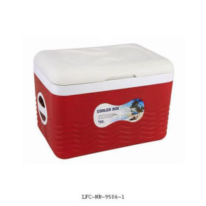Food Warmer, Plastic Cooler, Car Cooler Box, Beer Can Cooler pictures & photos