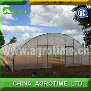 Hot Sale Economical Single Tunnel Greenhouse for Planting (CMC3810)