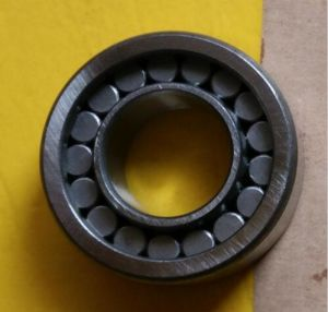 High Speed Precise Bearings Nu2205EV pictures & photos
