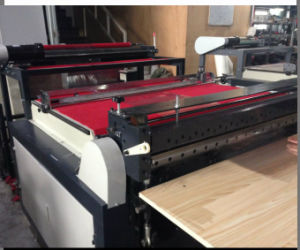 Automatic Polythene Polyethylene Roll to Sheet Cutting Machine (DC-HQ) pictures & photos