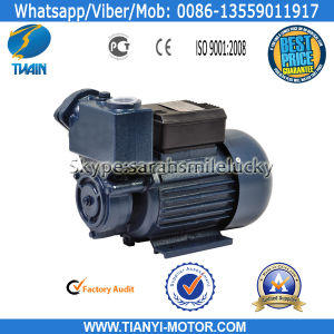 TPS60 Self-Priming Cheap Price 0.5HP Water Pump pictures & photos