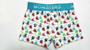 Allover Monster Printed New Style Boy Boxer Brief with Openin and Button pictures & photos