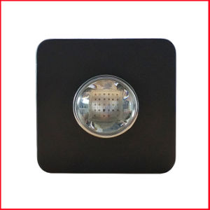 Integrated COB LED Grow Lights for Greemhouse/Indoor Plants pictures & photos