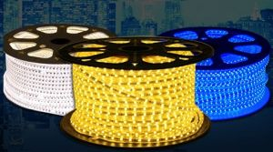 Brightness 12W/M SMD 3014 DC220V LED Rope Light for Decoration pictures & photos
