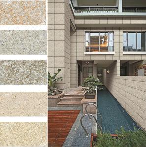 Ceramic Rustic Granite Stone Exterior Wall Tiles (200X400mm)