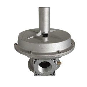 Good Sales Gas Pressure Filter Regulator pictures & photos