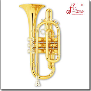 Gold Lacquer Bb Key China Brass Cornet pictures & photos