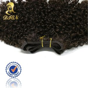100% Unprocessed Brazilian Virgin Hair Extension Kinky Curly