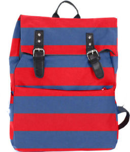 Fashion College Canvas School Student Backpack Bag pictures & photos