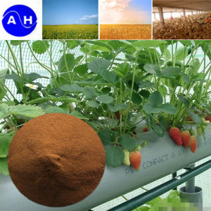 Vegetable Source Ferrous Amino Acid Chelate Organic Fertilizer pictures & photos
