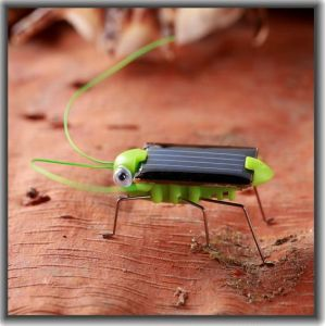 Kids Gift Intellectual DIY Solar Toy Insect Locust Grasshopper #054