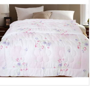 Soft and Smooth Fresh Julice Print Quilt pictures & photos