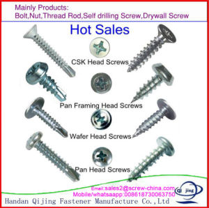 Stainless Steel Thread Cutting Screw with Factory pictures & photos