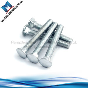 Hardware Stainless Steel Carriage Bolt pictures & photos