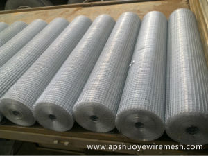 SUS304 Stainless Steel Welded Wire Mesh with SGS Certification pictures & photos