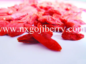 Ningxia Goji Berry / Wolfberry Fruit/ Chinese Medlar pictures & photos