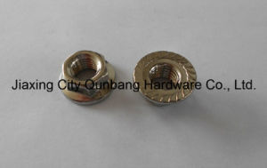 "Large Hex Flange Nuts (ANSI B18.2.2 1/4""-3/4"" Cl. 2/5) pictures & photos"