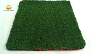 PE Fibrillated Synthetic Grass for Cricket No Infills pictures & photos