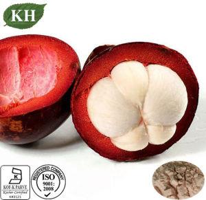High Nutritious Mangosteen Extract; Alpha-Mangostin/Polyphenol pictures & photos