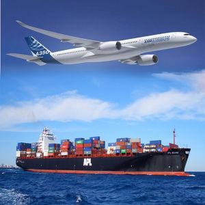 Shenzhen Shipper Logistics Service to Kirgizia, Kuwait, Laos, Lebanon, Malaysia pictures & photos