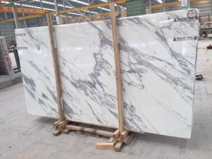 Italy Imported Statuari Marble Slab/ Snow Flake White Marble Slab pictures & photos