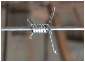 High Quality Factory Supply Cheap Barbed Wire Price pictures & photos