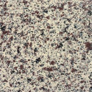 The Granite Artificial Quartz Stone pictures & photos