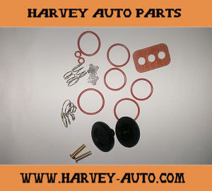 Hv-Rk09 Repair Kit for D2 Governor pictures & photos