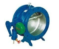 Title Disc Butterfly Type Check Valve pictures & photos