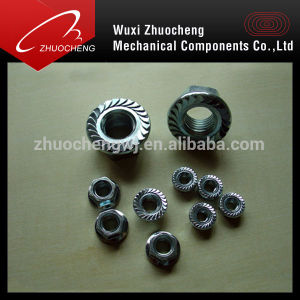 Galvanized DIN6923 A2 A4 SUS Hex Flange Nut pictures & photos
