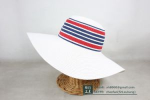 Paper Straw Hat (XH-PA2127) pictures & photos