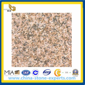 Chinese Granite Zhangpu Rust Granite Slabs for Flooring Outdoor (YQG-GS1013) pictures & photos