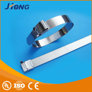 Naked Wing Locking Stainless Steel Locking Ties pictures & photos