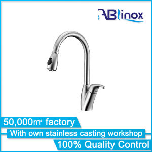 Abl SUS304 Pull out Kitchen Faucet Ab119 pictures & photos