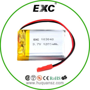 103040 3.7V 1200mAh Polymer Battery for Digital Camera pictures & photos