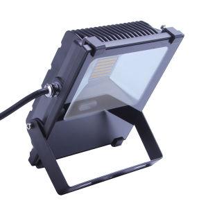 30W Flood Lamp pictures & photos