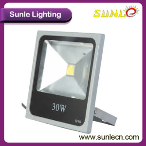Outdoor LED Flood Light Housing IP65 LED Flood Light 30W (SLFH33 COB) pictures & photos