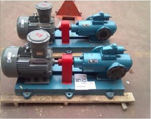 Cast Iron or Stainless Steel Twin Screw Pump pictures & photos