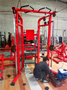 Fitness Equipment /Commercial Use Dual Pulley System pictures & photos