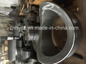 Hot Forged Stainless Steel High Pressure Abnormality Flange pictures & photos