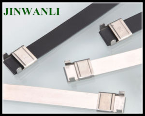 Ss304 Wing Lock L Type Stainless Steel Cable Tie pictures & photos