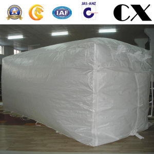 PP Container Liner Bag with 20ft 40ft pictures & photos