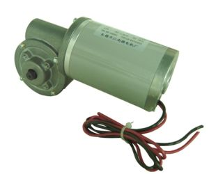 Worm-Gear Motor 63zy-Cj-1