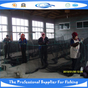 PE Knotless Fish Net (SDC17851) pictures & photos