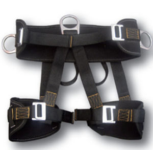 Nylon Webbing Rock Climbing Harness with CE En 12277 pictures & photos