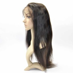Brazilian Virgin Hair Front Lace Wigs (12Inch-Straight) pictures & photos