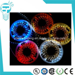 12V 24V SMD 2835 60LED Rope Strip pictures & photos