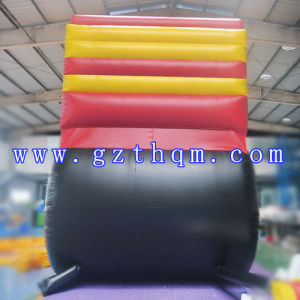 Good Play Jumping Castles Inflatable Water Slide/Giant Inflatables Water Slides pictures & photos