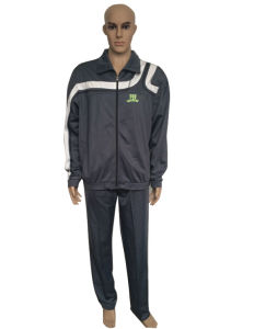 High Quality School Uniform Training Sport Tracksuit in Stock pictures & photos